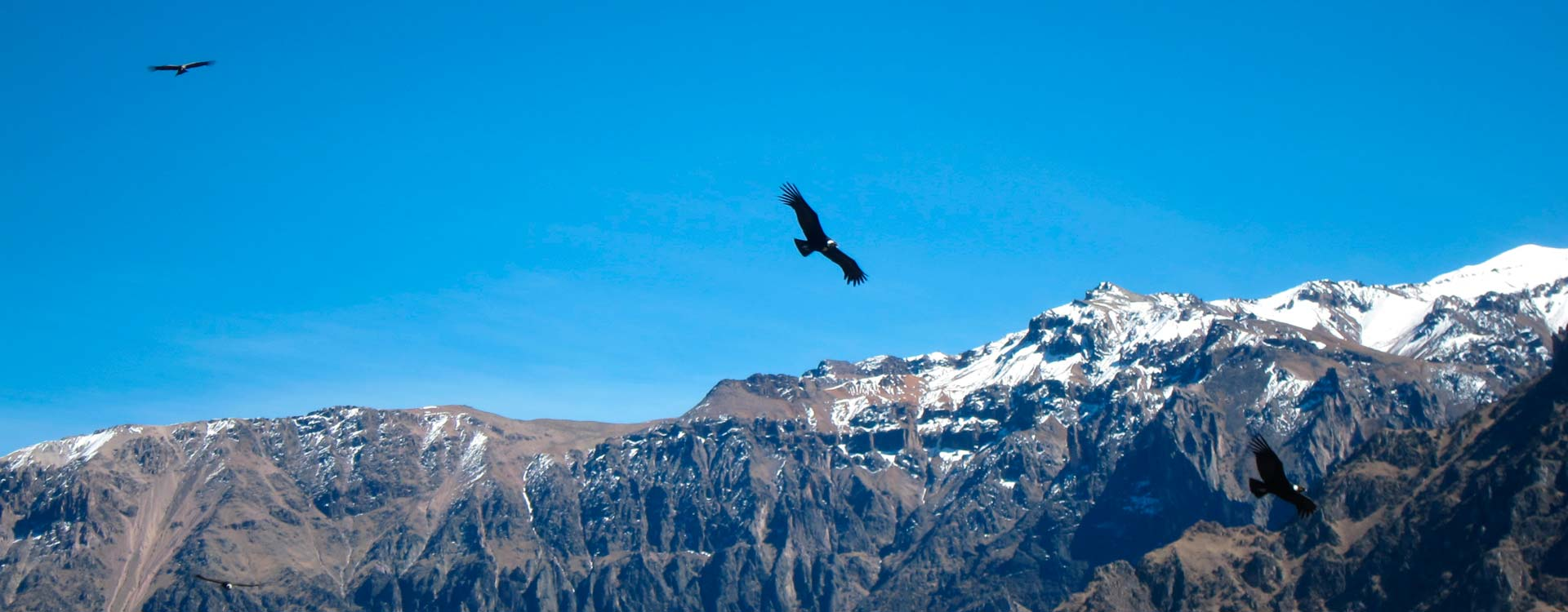 Colca Canyon – 2 Days