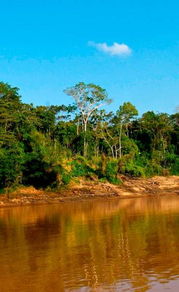 Tambopata – 3 days